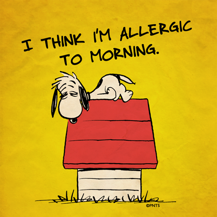 Peanuts, Alergic to Morning
